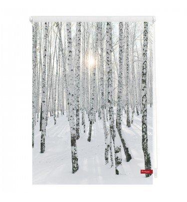 Motiv-Rollo - 80cm x 150 cm Fensterwelten Haushalt & Technik Rollo Klemmfix CHANNEL21