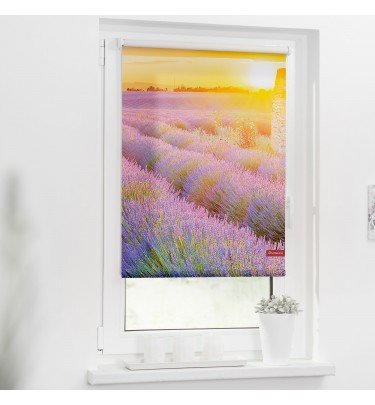 Motiv-Rollo - 70cm x 150 cm Fensterwelten Haushalt & Technik Rollo Klemmfix CHANNEL21