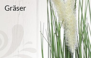 Belles Fleurs Gräser